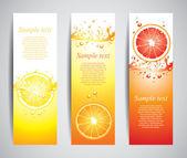 Juicy citrus splashes banners, vector — Stock Vector