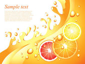 Juicy citrus splashes vector background — Stock Vector