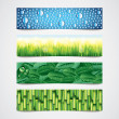 Nature patterns vector banners set — Stock Vector