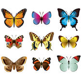 Butterflies photo-realistic vector set — Vector de stock