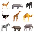 African animals vector set — Stock Vector #39621533