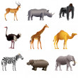 African animals vector set — Stock Vector