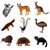 Australian animals vector set — Stock Vector