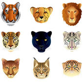 Big cats heads vector set — Stock Vector