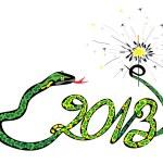 Green snake 2013 with a sparkler — Stock Vector #12027889