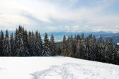 Beautiful winter mountain landscape — Stock Photo
