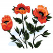 Stock Vector: Beautiful bouquet of poppies
