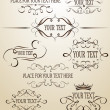 Set of calligraphic design elements — Stockvectorbeeld