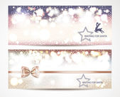 Holiday banners with snowflakes — Stock Vector