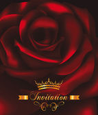 Beautiful invitation post card with red rose on the background — Cтоковый вектор