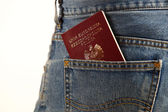 Polish Passport — Stock Photo