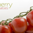 Cherry tomatoes on white background close up — Stock Photo