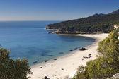 Beach Portugal — Stock Photo