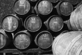 Cave à vin avec des tonneaux de vin — Photo