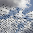 Stock Photo: Barb wire fence and blue sky blackground
