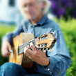 Guitarist — Stock Photo #26631301