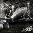 DC-3 Dakota — Stock Photo #26649095
