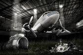DC-3 Dakota — Stock Photo