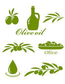 Set of olive design elements — Stock Vector