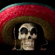 Постер, плакат: Dia De Los Muertos Day of The Dead Skull With Sombrero