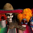 Постер, плакат: Dia De Los Muertos Day of The Dead Alter