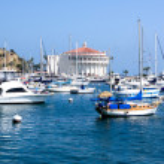 Moored Yachts Santa Catalina Island — Stock Photo #12847177