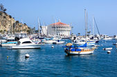 Moored Yachts Santa Catalina Island — Stock Photo