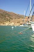 Moored Yachts Santa Catalina Island — Стоковое фото