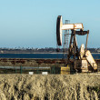 Pumpjack Oil Rig - Stock Photo