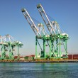 Shipping Cargo Crane Port of Los Angeles — Stock Photo #13683925