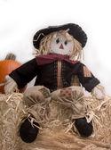 Harvest Scarecrow — Stock Photo
