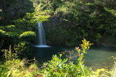 Road to Hana Waterfall — Stock Photo