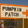 Pumpkin Patch Sign — Stock Photo #22202263