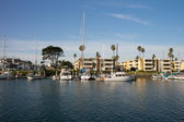 Channel Islands Marina — Stock Photo