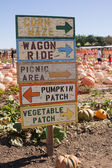 Pumpkin Patch Sign — Stock Photo