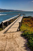 Coastal Pathway — Stock Photo