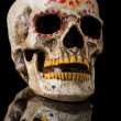 Day of The Dead Skull — Stock Photo