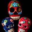 Colorful Day of Dead Skulls — Stock Photo #29912461