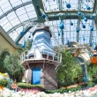 Stock Photo: Bellagio Conservatory