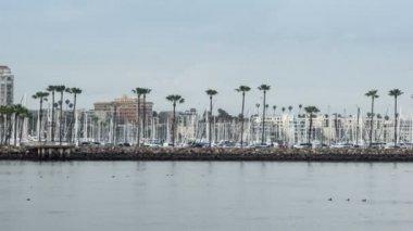 Shoreline Village Long Beach Time Lapse Video — Stock Video
