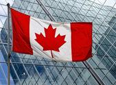 O Canada — Stock Photo