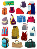 Backpacks and bags — Stock Vector