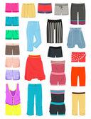 Women's shorts — Stock Vector
