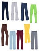 Women's business pants — Stock Vector