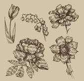 Fleurs vintage — Vecteur