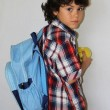 Schoolboy with apple — Stock fotografie