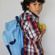 Schoolboy with apple — Stockfoto