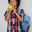 Schoolboy with apple — Stock Photo