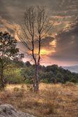Färgstark solnedgång — Stockfoto