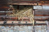古い納屋 — ストック写真